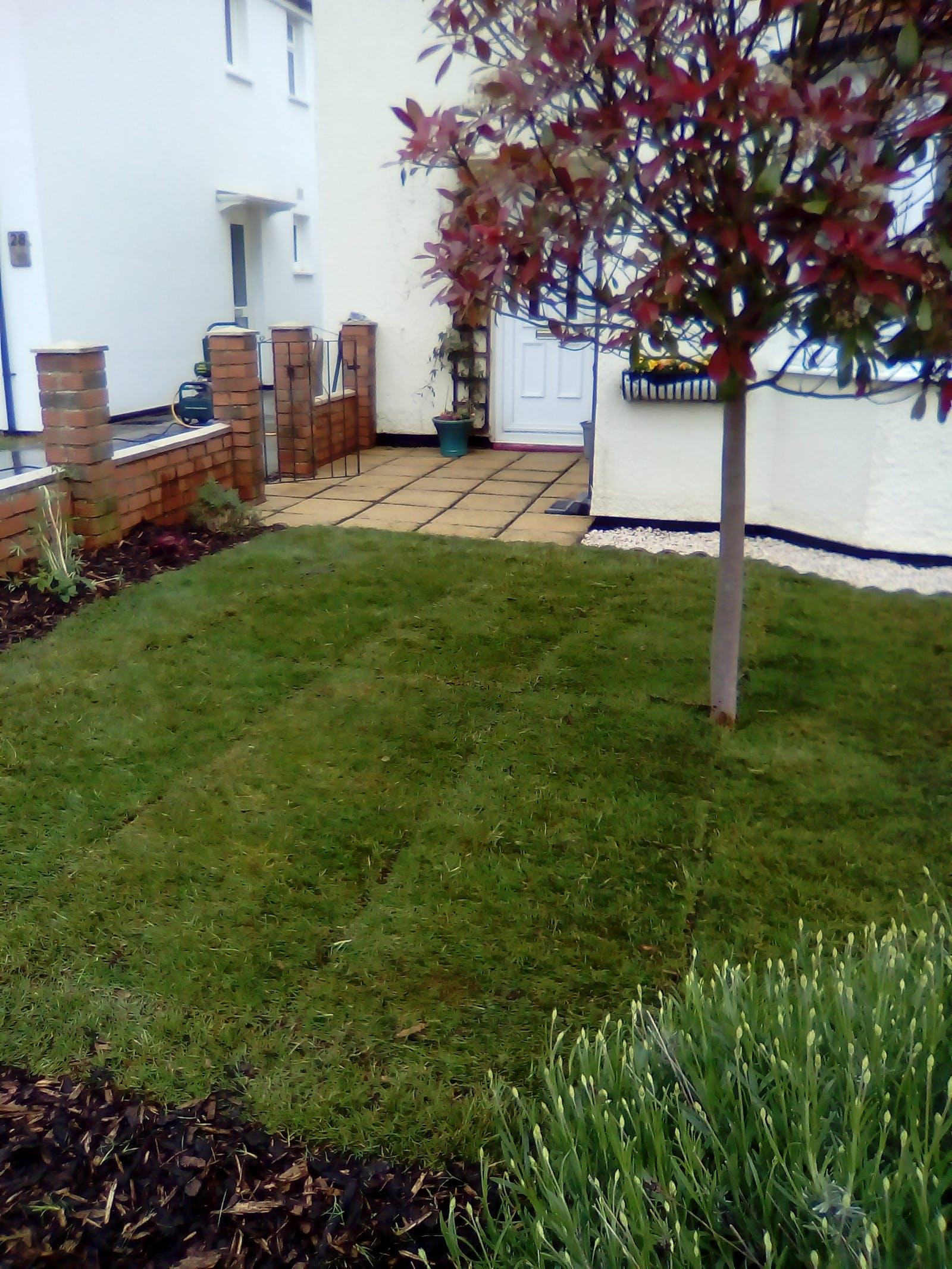 Gardening Daily Info - oxford garden design school