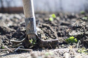 A spade digging a garden