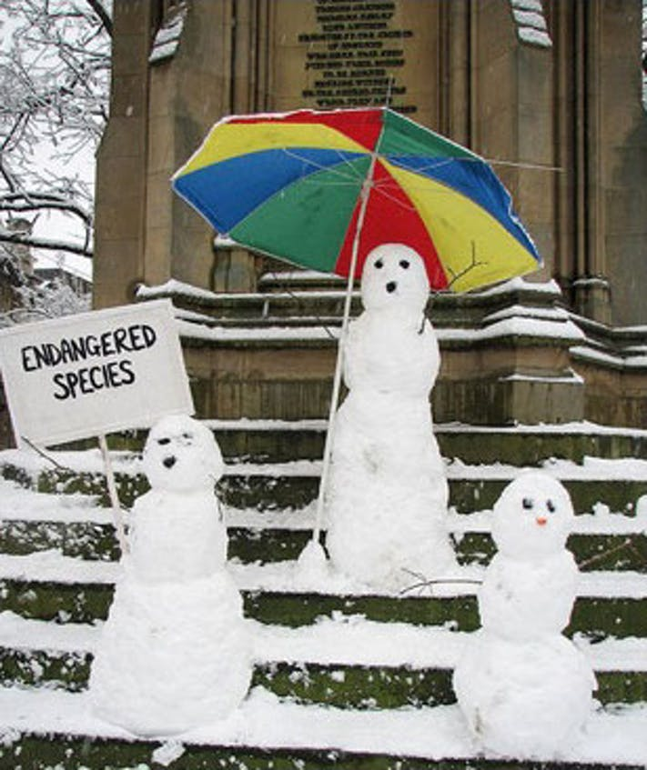 Endangered Snowmen by Emma Titcombe