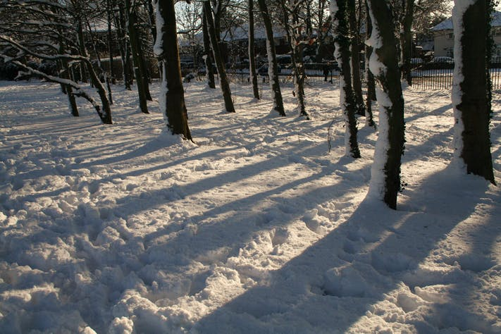Snowy Footprints in South Park by Lee Ingleton