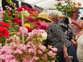 from Blenheim Palace Flower Show