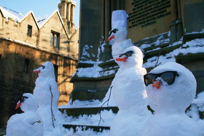 Cool Snowmen by Lee Ingleton